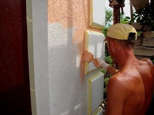 нанесение краски на короед