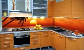 разнообразие стеклянных фартуков для кухни