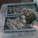 Из чего делают цемент: состав смесей